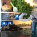 Kühlschrank vs. Schuhkarton