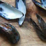 Freitagsfisch: Muscheln + zwei Zutaten = Glamour auf dem Tisch (inkl. Tricktipps)